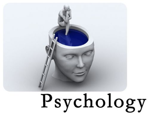 making your career after securing an online psychology degree, Human Body